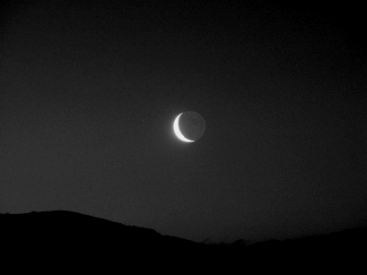 Noir Moon Rising